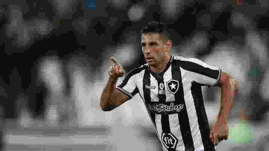 Diego Souza ainda busca o protagonismo esperado com a camisa do Botafogo - Vítor Silva/Botafogo