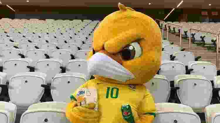 Canarinho Pistola torce pela seleção brasileira na Neo Química Arena, nas Eliminatórias para a Copa - Divulgação/CBF - Divulgação/CBF