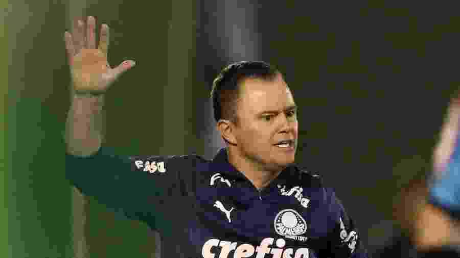 Andrey Lopes, auxiliar que virou interino no Palmeiras - Cesar Greco/Ag. Palmeiras/Divulgação