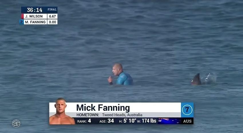 Mick Fanning é atacado por um tubarão durante final da etapa da África do Sul da Liga Mundial de surfe