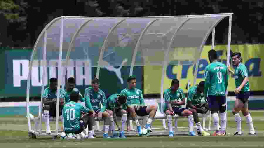 Parte do elenco teve o pagamento das luvas adiada para facilitar o fluxo de caixa - Cesar Greco/Ag. Palmeiras/Divulgação