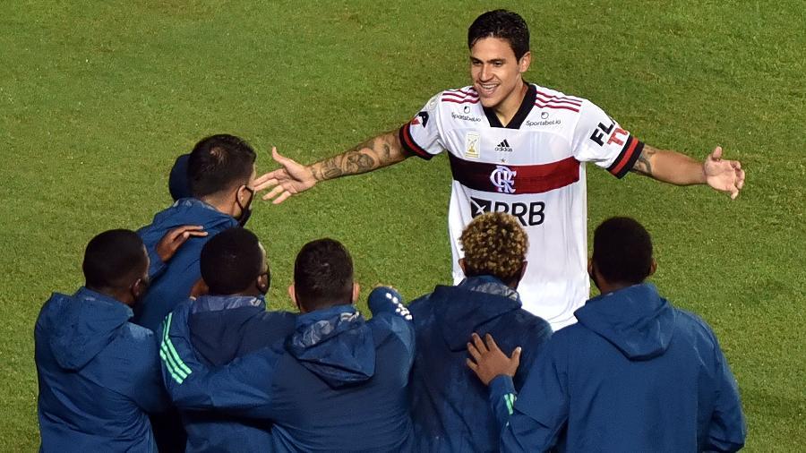 Pedro comemora um de seus gols pelo Flamengo, contra o Bahia, em jogo do Brasileirão 2020 - Walmir Cirne/AGIF