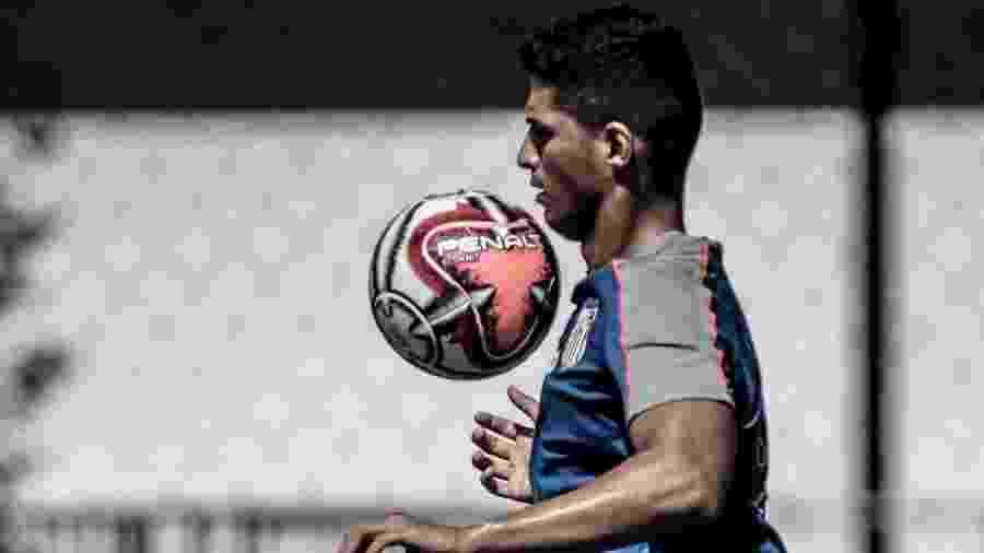 Daniel Guedes/Santos FC/Divulgação -  Ivan Storti/Santos FC