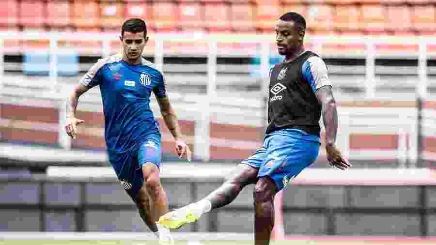 Zagueiro Cleber Reis chegou a ser disputado por outros clubes e chegou ao Santos cercado de expectativa - Ivan Storti/Santos FC