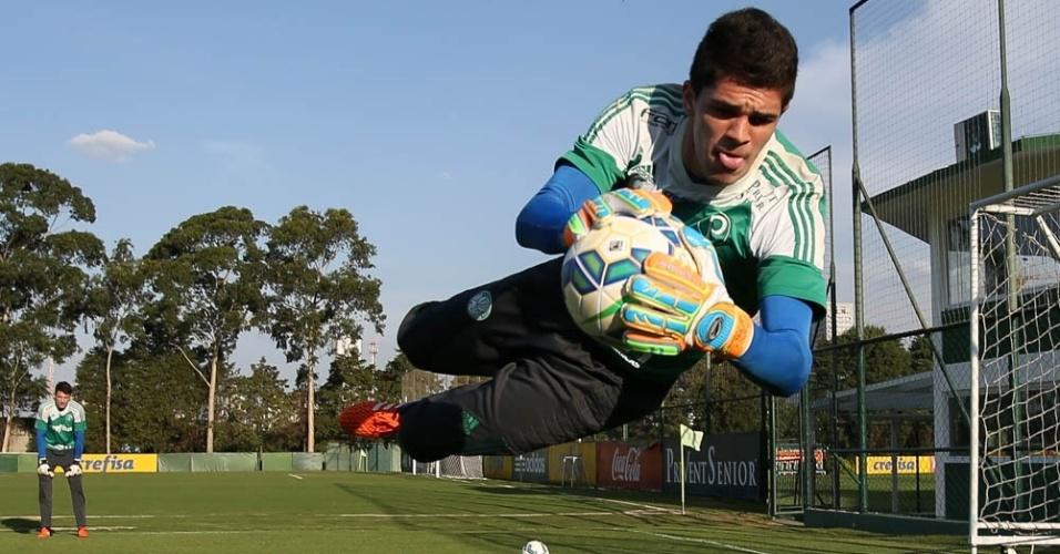 Vinicius Silvestre goleiro Palmeiras