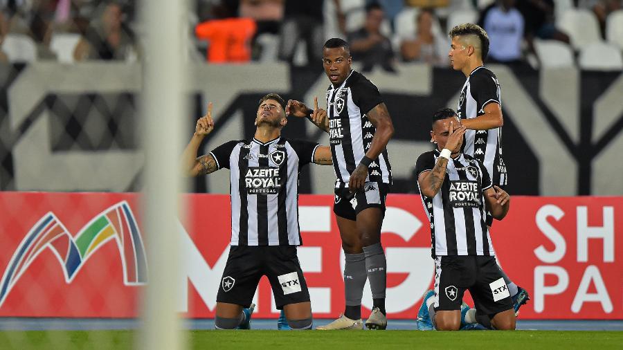Jogadores do Botafogo comemoram gol diante do Macaé - Thiago Ribeiro/AGIF