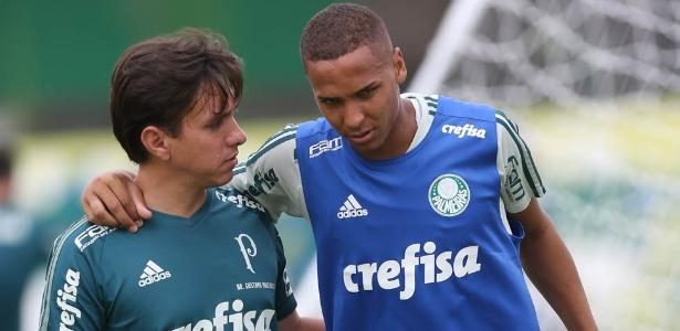 Cesar Greco/Ag. Palmeiras/Divulgação