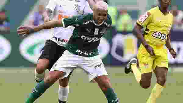 Palmeiras/Flickr