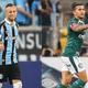 Everton x Dudu polariza Grêmio e Palmeiras e até respinga na seleção