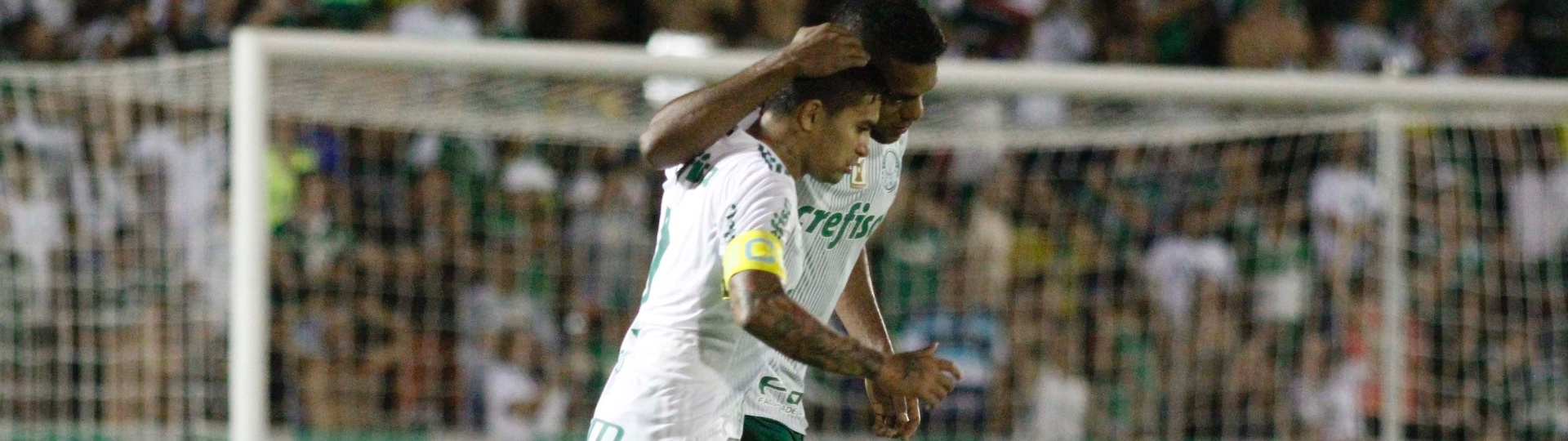 Dudu e Borja comemoram gol do Palmeiras contra o Novorizontino