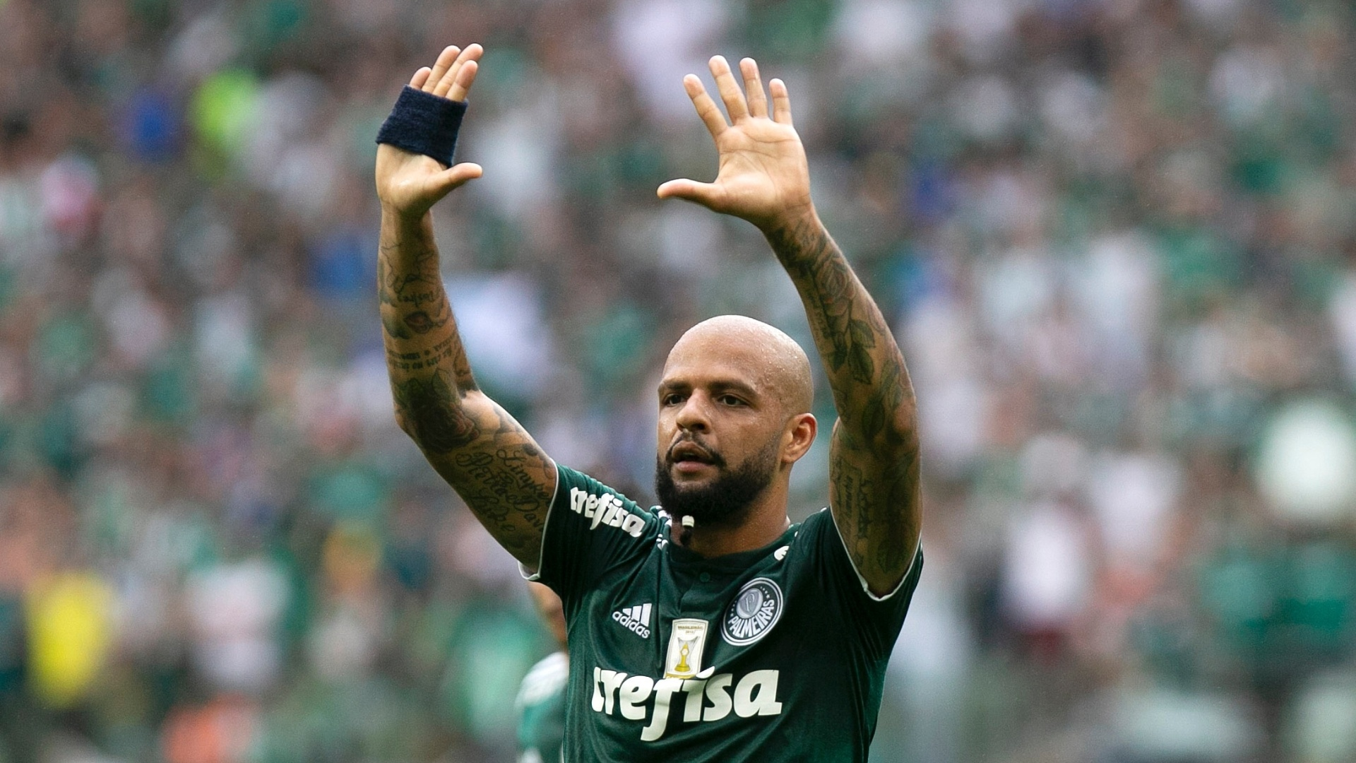 Felipe Melo, em partida Palmeiras x Vitória pelo Campeonato Brasileiro 2018