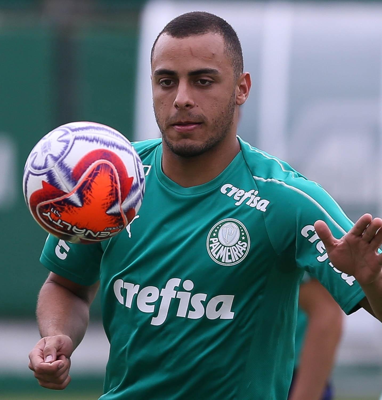 Palmeiras pode ficar sem camisa 9 e vê dilema por vaga no Campeonato  Paulista aumentar 6c7ae1d843115
