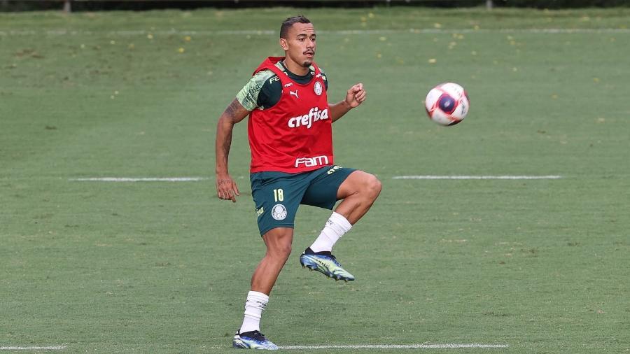 Papagaio retorna aos treinos do Palmeiras, na Academia de Futebol - Cesar Greco/Palmeiras