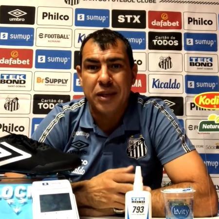 Fábio Carille concedeu coletiva virtual após o empate do Santos na visita ao São Paulo no Morumbi - Reprodução/Santos TV
