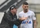 Santos enfrenta América-MG com Alison na zaga e Rodrygo na armação