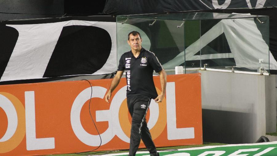 Carille muda sistema de jogo para fazer o Santos escapar das últimas posições - Fernanda Luz/AGIF
