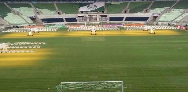 Setor Gol Norte será reaberto para as partidas contra Botafogo e Chapecoense