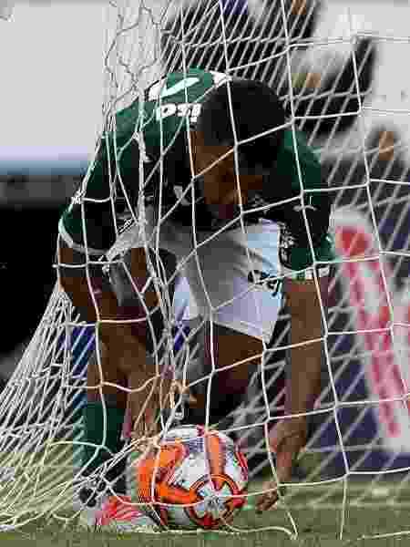 Veron comemora gol em jogo que deu título sub-20 ao Palmeiras - Fabio Menotti/Divulgação