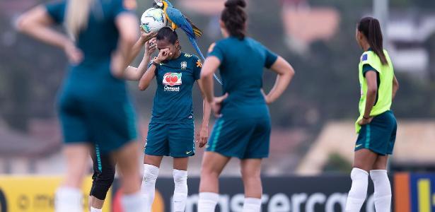 Arara pousa em jogadora da seleção feminina e interrompe treino