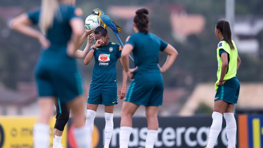 19.set.2020 - Arara pousa em jogadora da seleção feminina durante treino - Thaís Magalhães/CBF