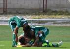 Marta Sanchis/Palmeiras/Divulgação