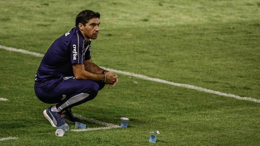 Abel Ferreira durante partida contra o Sport pelo Brasileirão - Paulo Paiva/AGIF