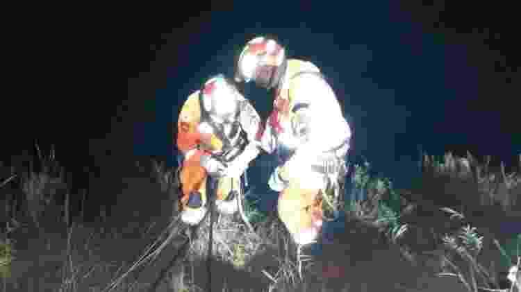 Resgate Henrique 4 - Divulgação/Corpo de Bombeiros - Divulgação/Corpo de Bombeiros