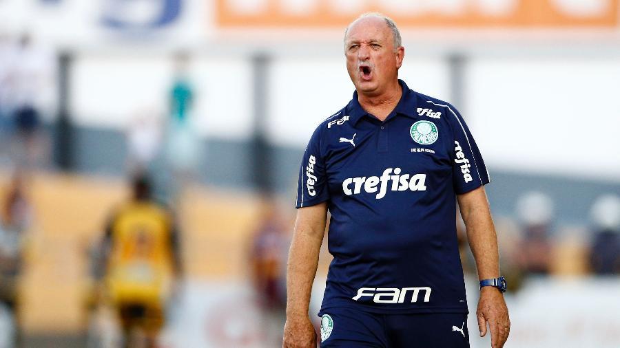 Luiz Felipe Scolari, o Felipão, esbraveja durante partida contra o Novorizontino no Campeonato Paulista - Thiago Calil/AGIF