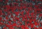 Palmeiras x Santos: 24 mil ingressos já vendidos para clássico de sábado - Miguel Schincariol/Getty Images