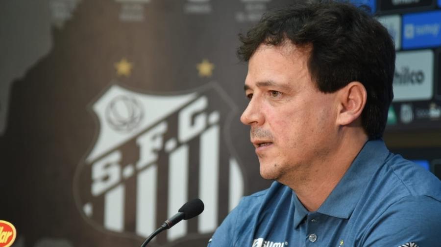 Fernando Diniz, novo técnico do Santos - Divulgação/Santos FC