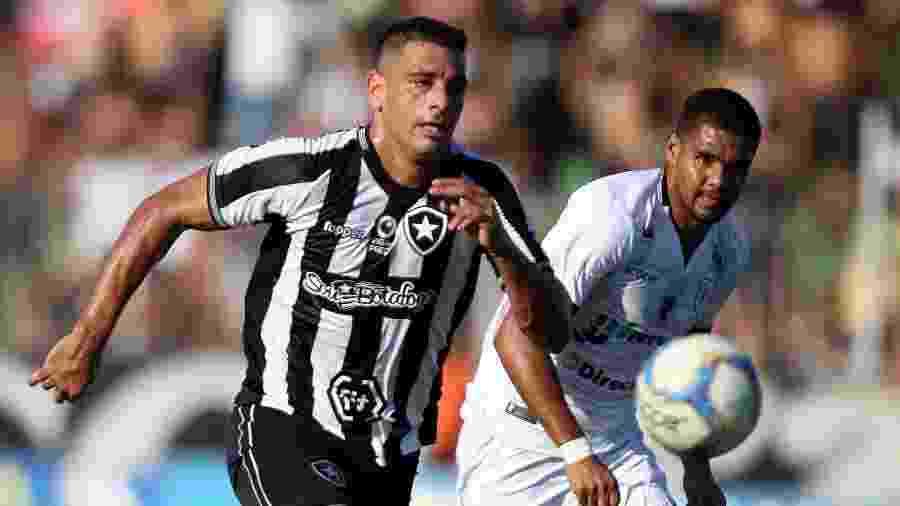 """Botafogo busca uma sombra para Diego Souza após a saída de Kieza e quer jogador """"bom e  - Vitor Silva/SSPress/Botafogo"""