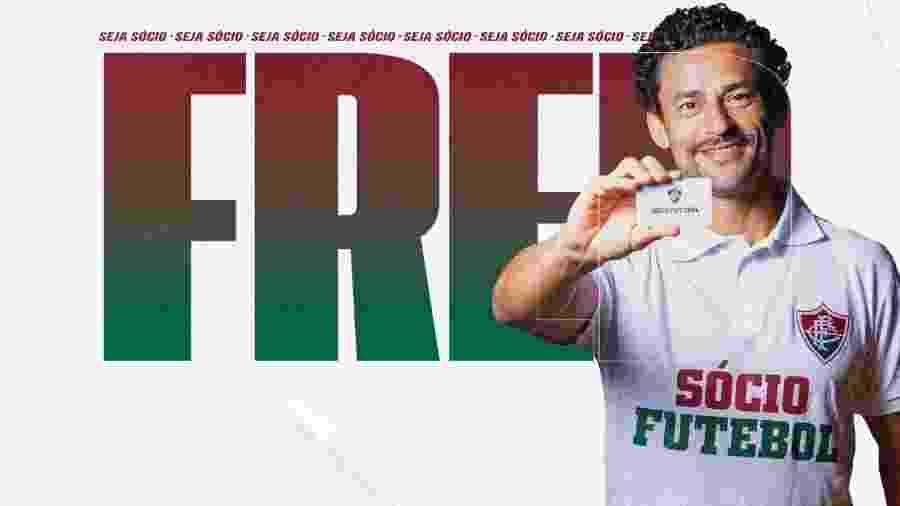 Fred voltou a vestir a camisa do Fluminense em live de comemoração do tetracampeonato brasieleiro - Divulgação