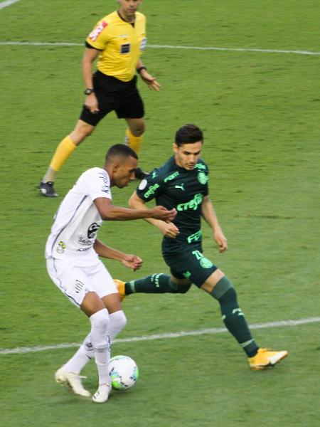 Palmeiras e Santos têm jogos transmitidos na TNT - Fernanda Luz/AGIF