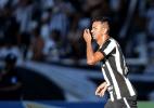 Divulgação/Botafogo FR