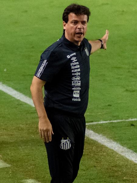 Fernando Diniz, novo técnico do Santos, durante partida contra o Boca Juniors na Vila Belmiro - JOTA ERRE/AGÊNCIA O DIA/AGÊNCIA O DIA/ESTADÃO CONTEÚDO