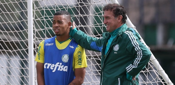 Para técnico do Palmeiras, clube que contratar camisa 33 'vai ficar bem servido'