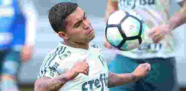 Dudu voltou a treinar com bola no Palmeiras - Agência Palmeiras