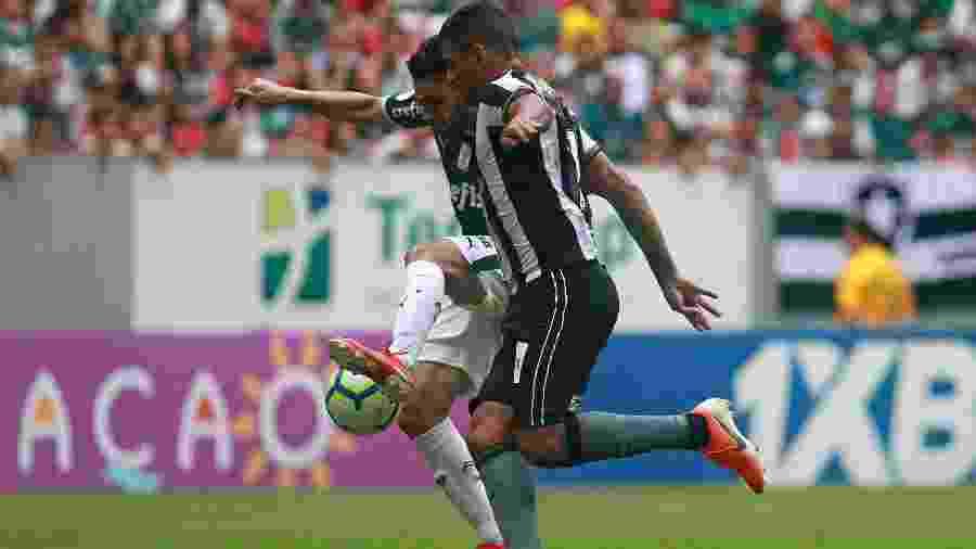 Botafogo tenta anular no STJD a derrota por 1 a 0 para o Palmeiras pelo Campeonato Brasileiro - Vitor Silva/Botafogo