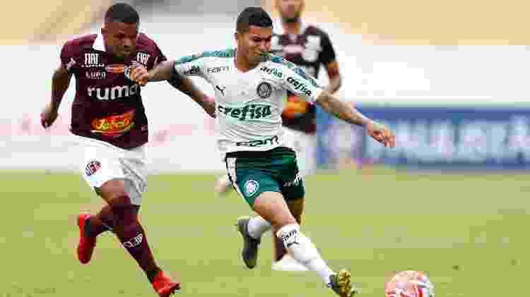 Dudu, atacante do Palmeiras  - Thiago Calil/AGIF - Thiago Calil/AGIF