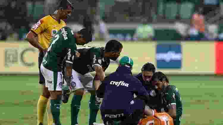 Ricardo Goulart machucou o joelho contra o Fortaleza no 1º turno; foi seu último jogo pelo Palmeiras - Cesar Greco/Ag. Palmeiras/Divulgação