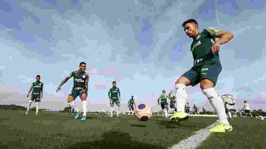 Jogadores do Palmeiras durante treino nos Estados Unidos -  Cesar Greco/Ag. Palmeiras/Divulgação