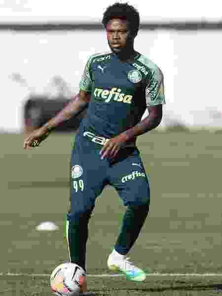 Luiz Adriano, atacante do Palmeiras, durante treino na Bolívia - Cesar Greco