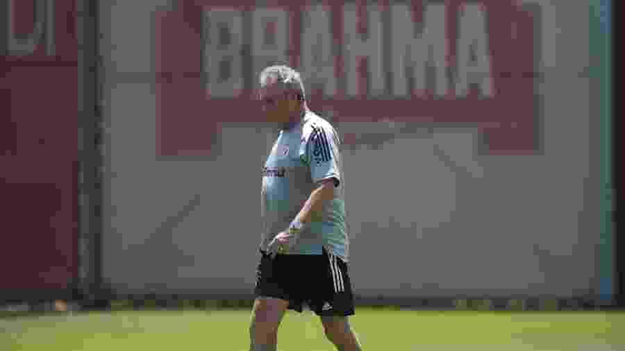 Abel Braga conseguiu aproveitamento superior a Eduardo Coudet no Brasileiro pelo Inter - Ricardo Duarte/Inter