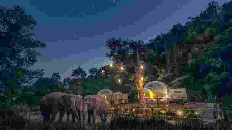 Anantara Golden Triangle Elephant Camp & Resort - Reprodução/Instagram - Reprodução/Instagram
