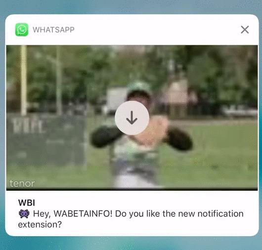 Notificação do WhatsApp para iOS vai mostrar preview do GIF