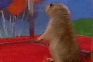 Esquilo dramático foi um dos primeiros virais do YouTube