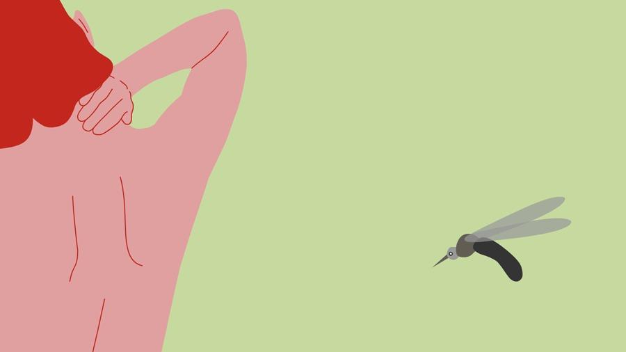 Pergunte ao VivaBem Picada Mosquito