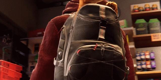 gato aranha mochila contra o crime