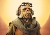 The Mandalorian apresenta novo personagem   Fonte: Disney