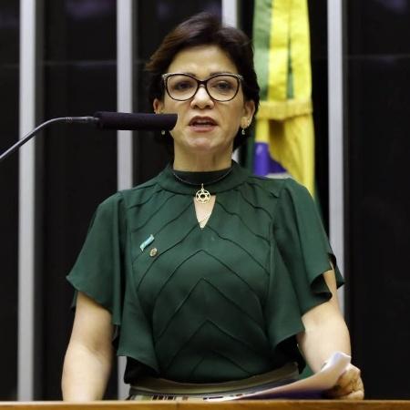 A deputada federal Alê Silva (PSL-MG) - Najara Araujo/Câmara dos Deputados
